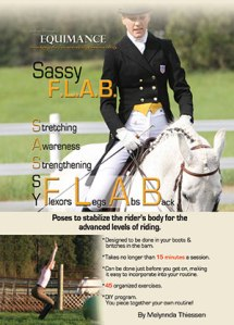 SassyFlabCover6x9-copy